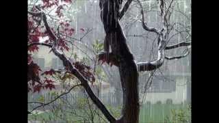 Canción del paraguas de hilo azulado