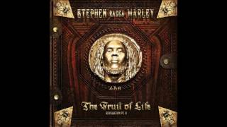 "Stephen ""Ragga"" Marley ft. Damian ""Jr. Gong"" Marley - Music Is Alive"