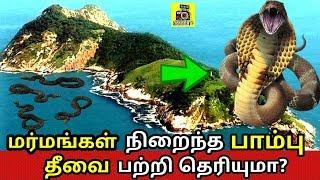 மர்மங்கள் நிறைந்த பாம்பு தீவை பற்றி தெரியுமா ? Mystery about snake island in tamil | history epi 08