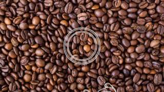 After Effects Template | Royalty Free | Cafe Logo Reveal