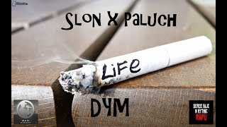 Słoń x Paluch - DYM (Dave Blend)