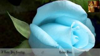 I Love You Goodbye  - Celine Dion