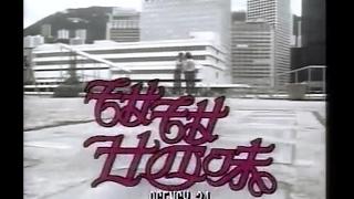 甜甜廿四味 香港麗的電視劇《甜甜廿四味》主題曲 1981