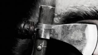 Tengger Cavalry - Die on My Ride (Lyric Video)