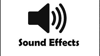 Sound Effect - Wrong Buzzer