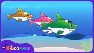 Baby Shark Song | Songs for Kids | Songs for Children | The Kiboomers