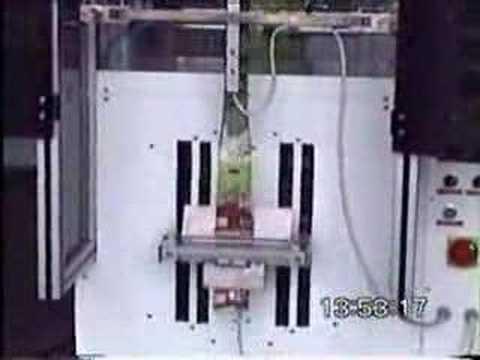 Vidalı Sistem Otomatik Paketleme Makinesi