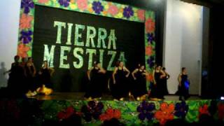 Grupo de Flamenco, Tierra mestiza