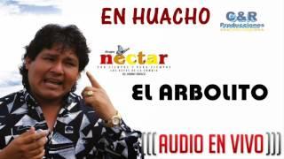 EL GRUPO NECTAR - EL ARBOLITO (EN VIVO HUACHO)