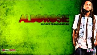 alborosie is dis love