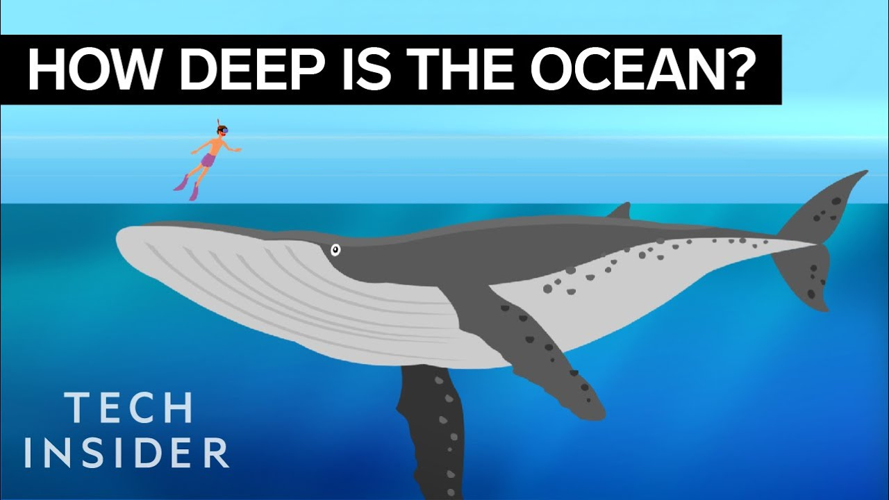 How Deep The Ocean Goes