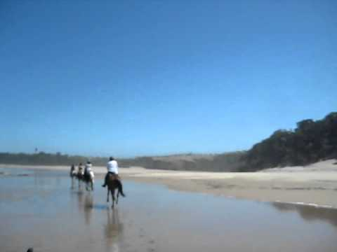 Horseriding holiday South Africa Wild Coast Unicorn Trails