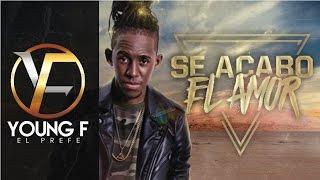 Young F - Se Acabo El Amor | Audio