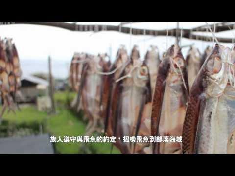 飛魚季歷程 - YouTube
