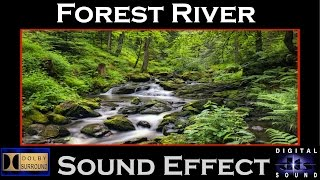 Forest River Water Sound Effect | HI-RESOLUTION AUDIO