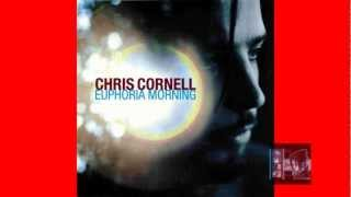 Chris Cornell   Euphoria Morning 1999