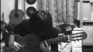 elfen lied - LILIUM - Full Ver. on guitar
