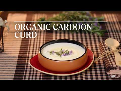 """Organic Cardoon Curd"" Recipe by Lola Puig. KM0 and Slow Food Restaurant Ca La Lola"