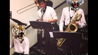 TOO MANY ZOOZ (Wet Cover)