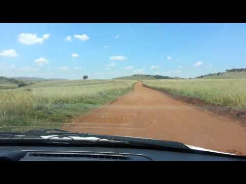 Gazelle Crossing , Rhino Lion Park South Africa