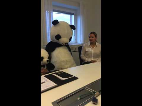 Pandas lösningar