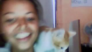 o rep da menina e o gato