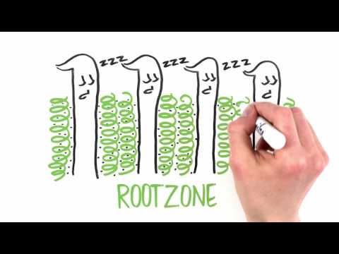 AstroTurf RootZone - The Game Changer