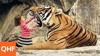 20 Interesting Facts About Bengal Tiger | Hindi
