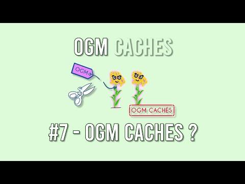 OGM Cachés - 7 : Mais c'est quoi un OGM Caché ?