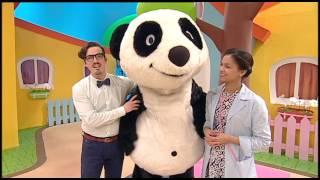 Panda e os amigos | Brevemente no Canal Panda