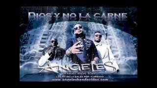 CONTIGO Angeles Bendecidos Dios y no la carne Salsa pop y urbana 2013