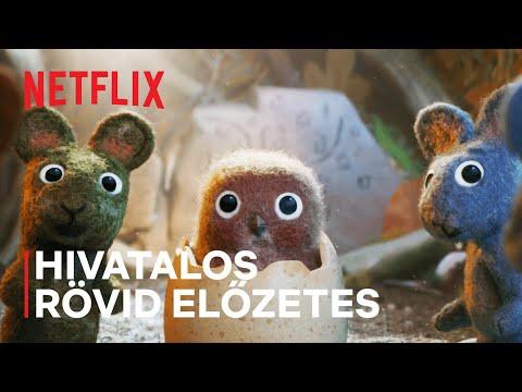 Vörös, a vörösbegy   Hivatalos rövid előzetes   Netflix