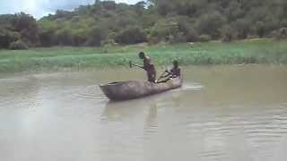 Hippo killed by local hunters at Cahora Bassa
