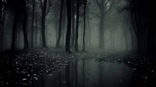 Melodic Metal - Insomni
