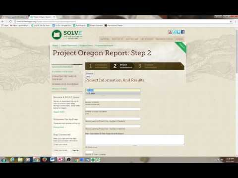 How to submit the online SOLVE project report form