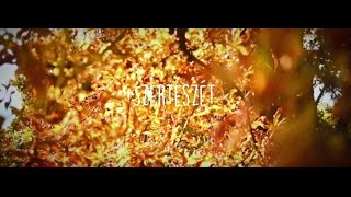 New Level Empire - Szerteszét (Official Music Video)