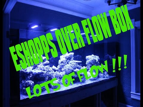 Eshopps Overflow Eclipse Large install and review on the Phoenix 700 reef tank