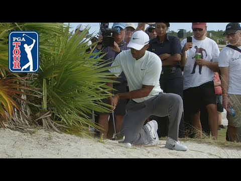 Tiger Woods? shot from the bushes at Hero World Challenge 2018