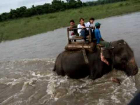 Atravezando el río en elefante