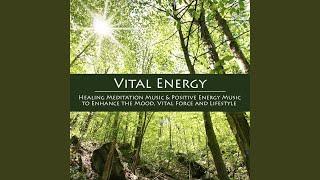 Vital Energy (Healing Meditation Music)