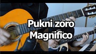 Pukni zoro - Magnifico - cover (AKORDI u opisu snimka)