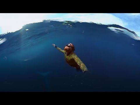 GoPro Spherical: Diving with a Blue Whale in VR