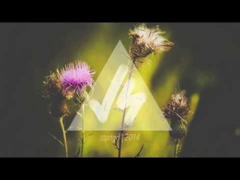 racing-glaciers-moths-carousel-remix-vibe-savvy