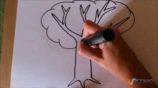 Como desenhar uma árvore animada