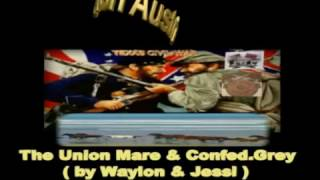 The Union Mare & Confed.Grey (Waylon & Jessi)
