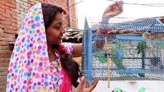 देखिए प्रेमिका आई प्रेमी का दिया हुआ तोता लेकर ससुराल में तो क्या हुआ - Comedy Video  MR Bhojpuriya