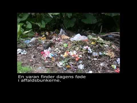 Affald i udviklingslande