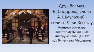 Дружба Оркестр электромузыкальных инструментов