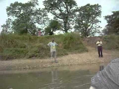 Boat Ride Towards Elephant breeding Centre, Saurah, Chitvan, Nepal.avi