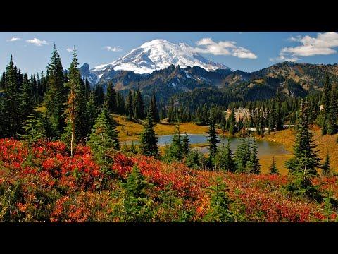 Mt. Rainier National Park, Seattle